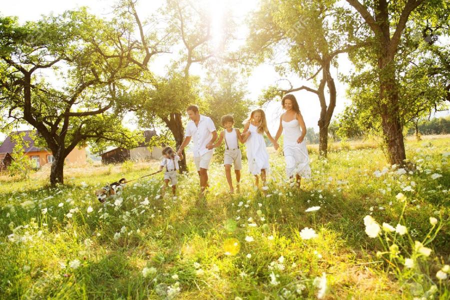 Η οικογένεια σαν δέντρο: οι ρίζες που βγάζουν κλαδιά και τα κλαδιά που ποτίζουν τις ρίζες